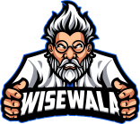wisewala web design michigan