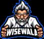 WiseWala Web Design